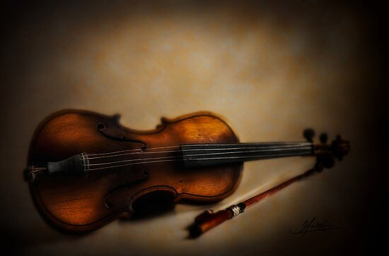 The Violin by Mieke Boynton