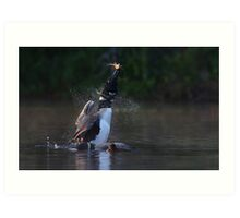 Pisces Rising - Common loon with fish Art Print