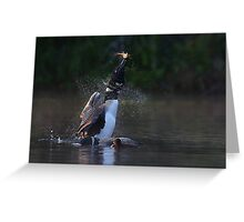 Pisces Rising - Common loon with fish Greeting Card