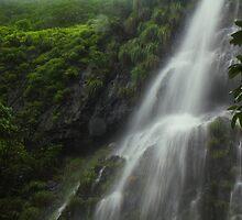 Part of Amboli Waterfall, Western Ghat, India by Biren Brahmbhatt