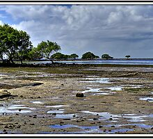 The Mud Flats by Terry Everson
