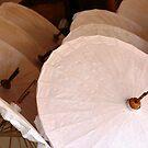 Virgin Umbrellas  by KelseyGallery