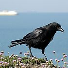 Head Crow by mikebov
