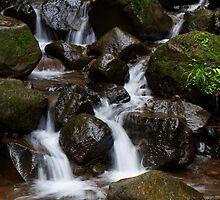 A Stream, Marleshwar, Western Ghat, India by Biren Brahmbhatt