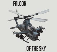 Falcon of the Sky by Schwifenburger