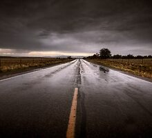 Driving Rain by Bob Larson