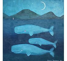 Whale family Photographic Print