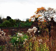 Autumn Gardens by Charlotte Evans