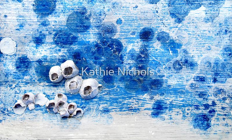 Barnacle Blues by Kathie Nichols