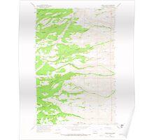 USGS Topo Map Washington State WA Stray Gulch 244076 1966 24000 Poster