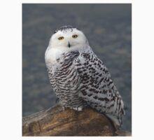 Owl on the Rocks - Snowy Owl Kids Tee