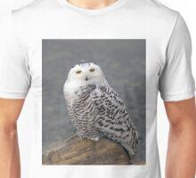 Owl on the Rocks - Snowy Owl T-Shirt