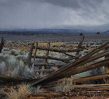 Works Of The Past by Charles & Patricia   Harkins ~ Picture Oregon