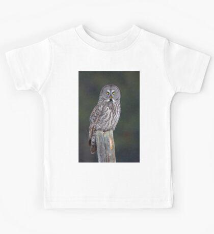 Great Grey Owl on Post Kids Tee