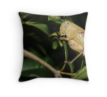 Hungry Grass Hopper Throw Pillow