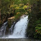 Wilmot Falls by Elaine Game