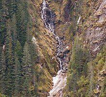 Snowmelt into Fjords by dbvirago