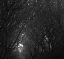 """Green wood"" by Gelidelune"