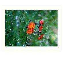 Orange Brush Art Print