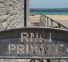 St Ives Royal National Lifeboat Institution by Terri Waters