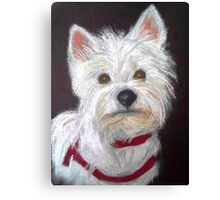 Little White Terrier Canvas Print