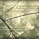 So Let The Tears Fall ~ by Kelly Chiara
