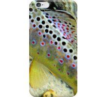 Michigan Brown iPhone Case/Skin
