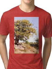 Charnwood Forest Watercolour Tri-blend T-Shirt