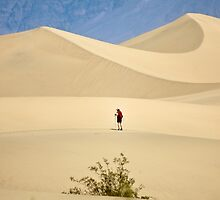 Where desert winds blow by Owed To Nature