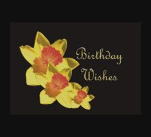 Daffodils Isolated On Black Birthday Wishes Baby Tee