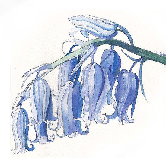 Bluebells by Esmee van Breugel