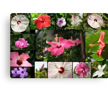 Say Hi to Hibiscus Canvas Print