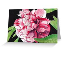 Single Red Peony Rose Greeting Card