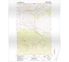USGS Topo Map Washington State WA Mount Hull 242498 1981 24000 Poster