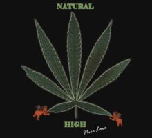 Natural High by Julie Balfour