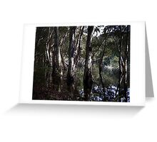 Dudley Lagoon Greeting Card