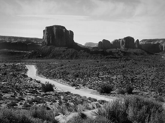 The Road in Tse'Bii'Ndzisgaii ~ Monument Valley by Lucinda Walter