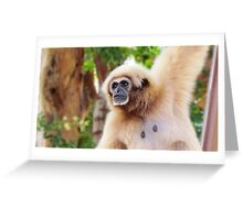 White-handed Gibbon Greeting Card