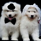 Samoyed Puppies by Tawnydal