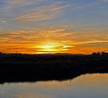 Bolsa Chica Reserve Sunrise by Joanne Ziegler