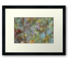 Silky Strands with Dew Framed Print