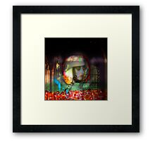 Chapel of the Dragonfly Framed Print