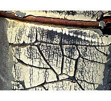 Peeling Paint 10 of 10 Photographic Print