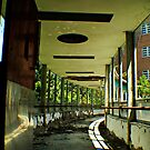 Overpass To Catastrophe- Abandoned Asylum, NY by MJD Photography  Portraits and Abandoned Ruins