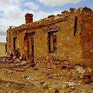 Australia's Old Homestead Cottage by photoj