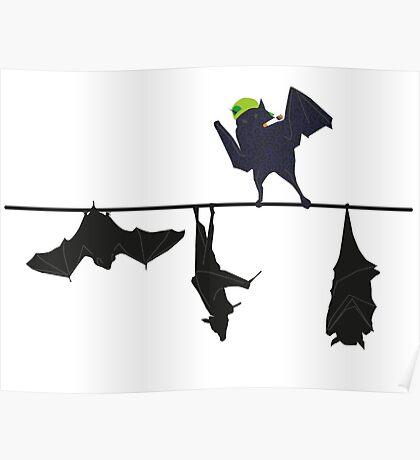 Top bat Poster