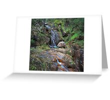 Wombeyan Falls - Mid Section Greeting Card