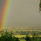 A Rainbow in my Neighbourhood by Marilyn Harris