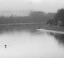 The lone Rower by Andrew Wilson