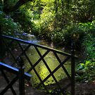 BRIDGE TO THE PARADISE GARDEN by Michael Carter
